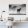 Picture of Cuadro canvas    Caballos BN